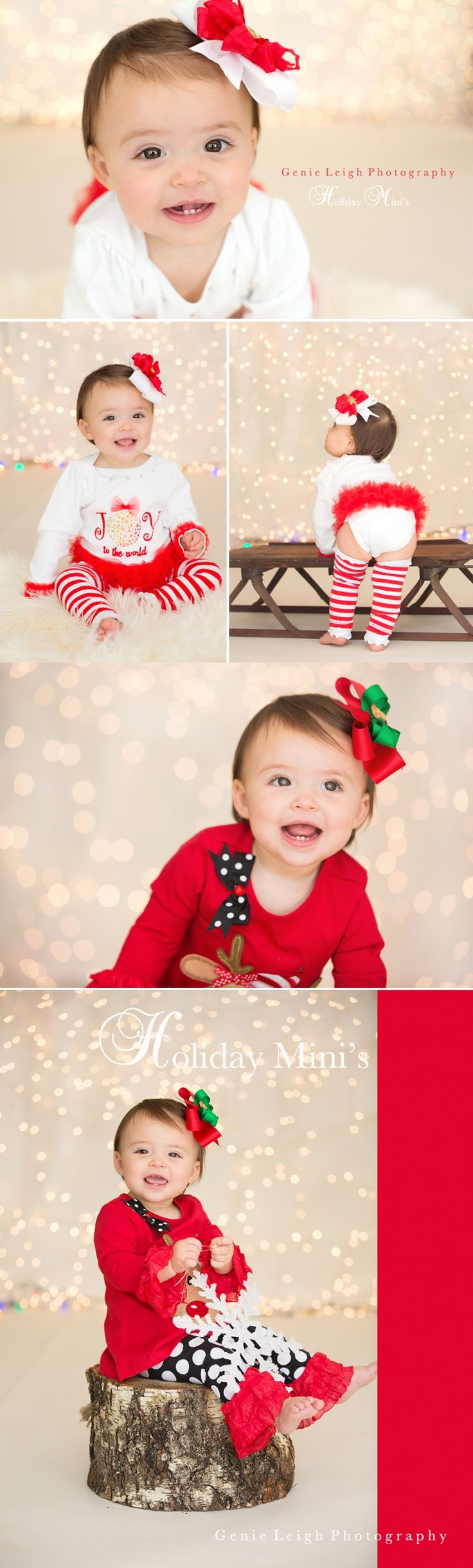 Winter Wonderland Holiday Mini's » Genie Leigh Photography