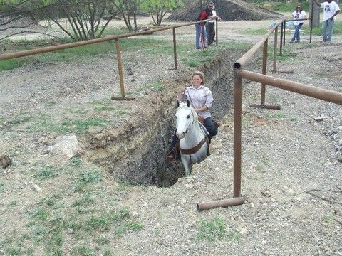 Ravine Obstacle - I want one of these but I don't want to be the one who takes the horses in it  : )