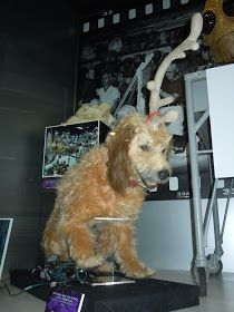 Max Movie Dog Breed : movie, breed, Hollywood, Movie, Costumes, Props:, Animatronic, Grinch, Display..., Movie,, Costumes,