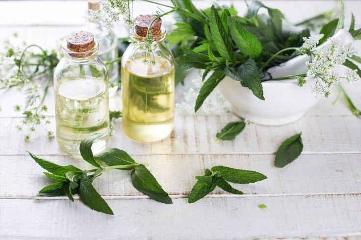 Kosmetiikan ihoa pehmentävät ja rasvoittavat ainesosat