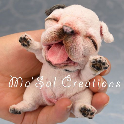 Ma'Sal original /Special DollyDoggy New-Born Baby French Bull direct from Artist #AllOccasion