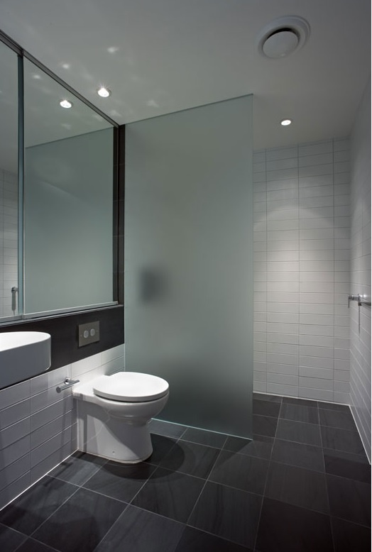 Empire frosted and frameless shower screen