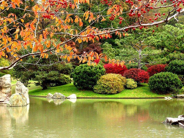 44 best iris want gardens images on pinterest gardening for Formal japanese garden