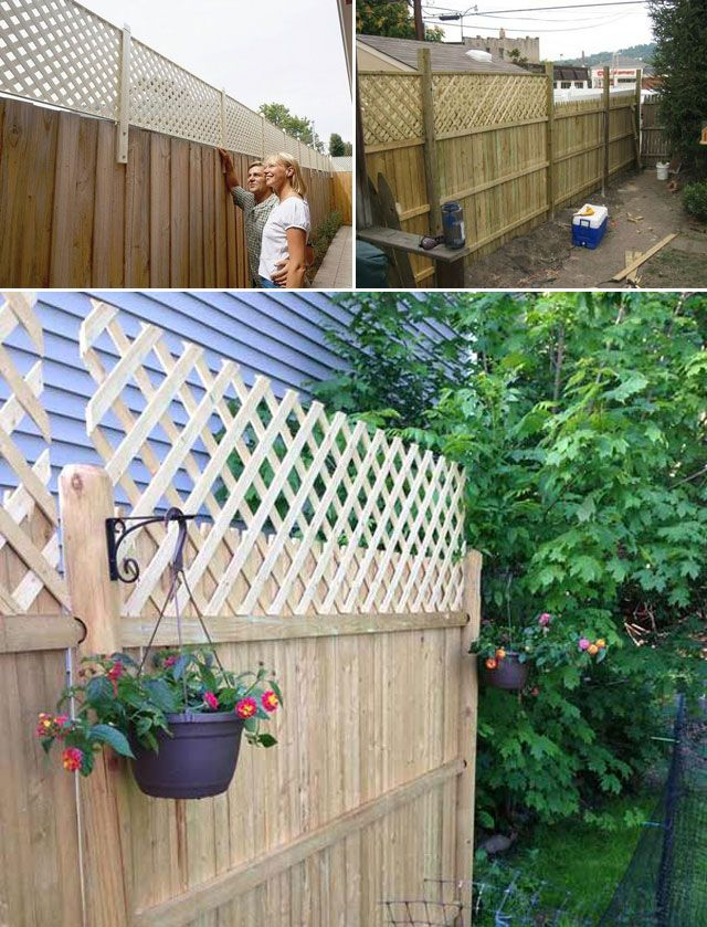 Try These 10 Ideas For Adding Privacy To Backyard Oasis With