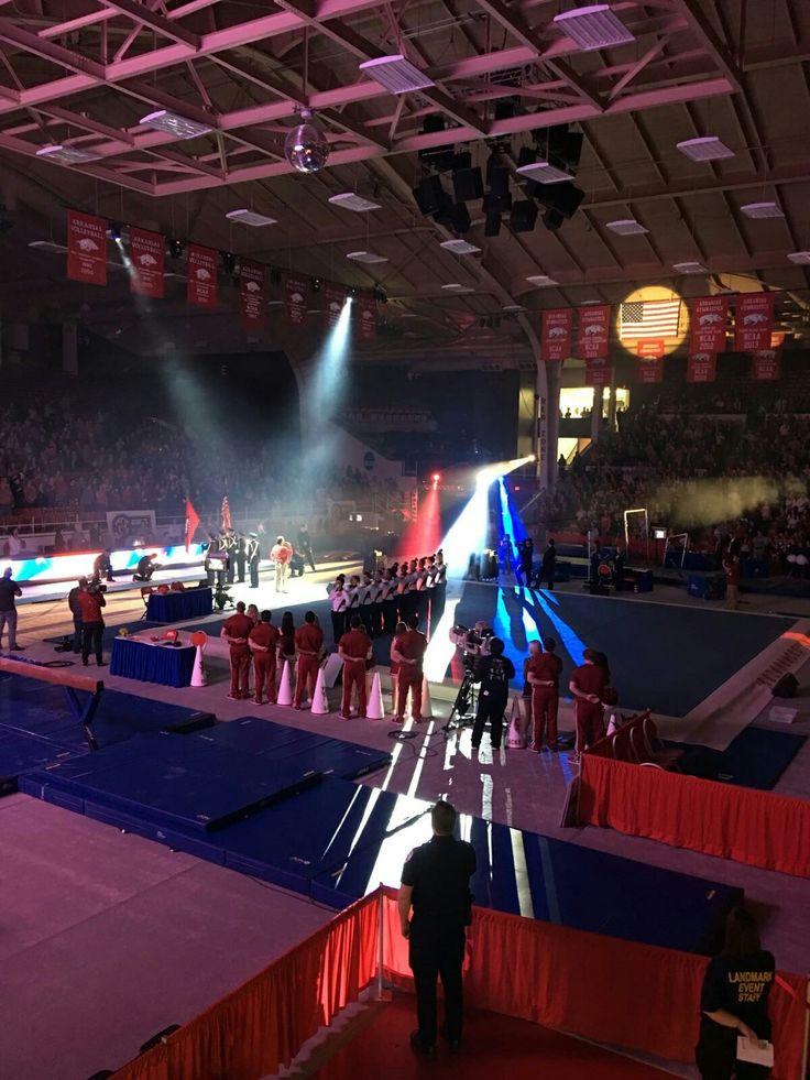 UofA gymnastics meet with LSU