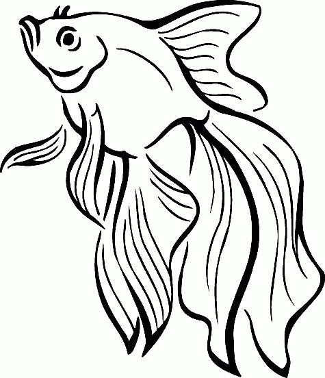 Colouring Pages Rainbow Fish : 92 best printable coloring pictures for adults assisted living