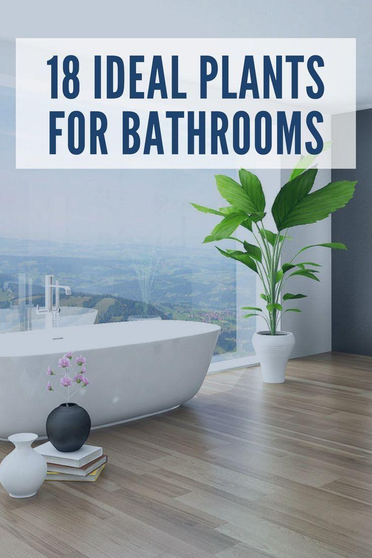 1659 best Bathroom Ideas images on Pinterest