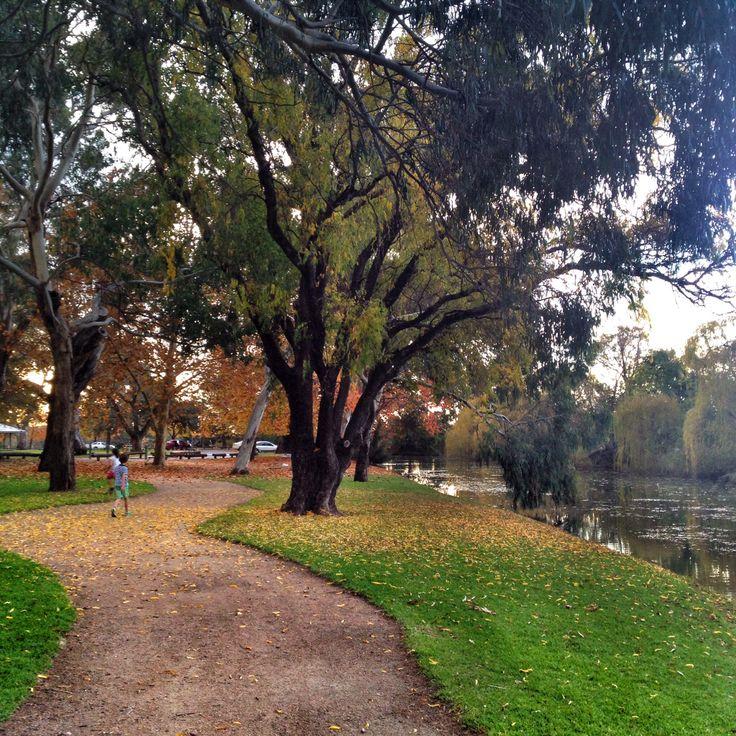 Lawson Park, Mudgee