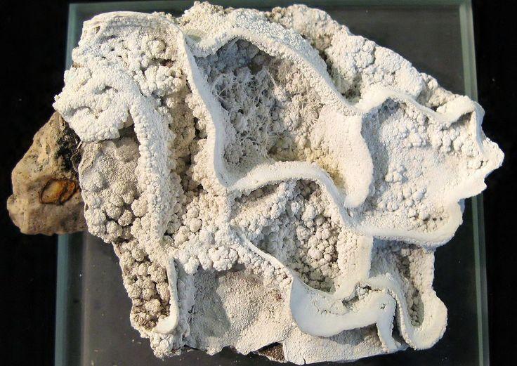 """HIDROCINCITA ó """"Flor de cinc"""",es unmineraldel grupo de losCarbonatos. Es un hidroxicarbonato decinc, que rara vez forma cristales y lo normal es encontrarlo como masas terrosas o costras. El nombre deriva del griegohidros, que significa agua, y decinc, por su composición química"""