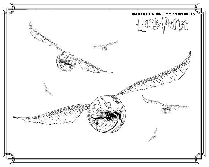 224 best Coloriage HARRY POTTER images on Pinterest Colouring