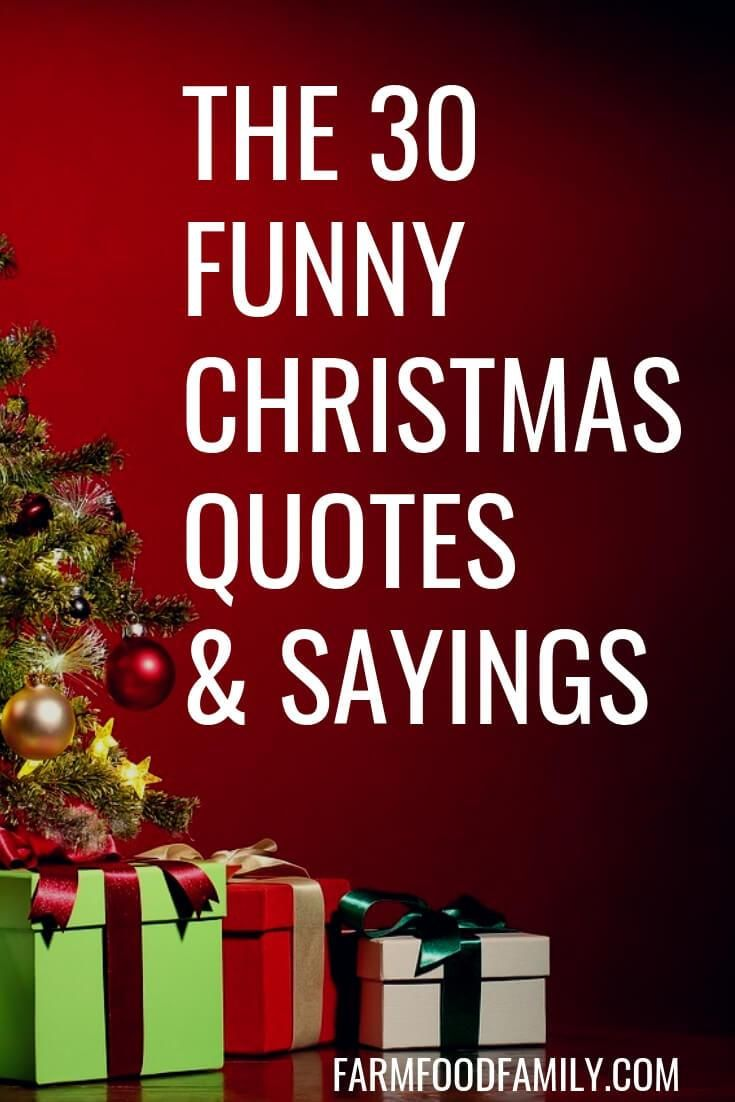 30 Funny Christmas Quotes Sayings That Make You Laugh Christmas Quotes Funny Christmas Quotes Holiday Quotes Funny