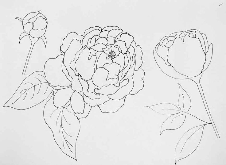 How to Paint Peonies with Watercolor Effect - Just Paint It Blog