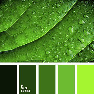 Полежать бы на лугу в сочной зеленой траве да понежиться влучах теплого весеннего солнышка. Зеленый цветрасслабляет и снимает напряжение. Переходные оттенкизеленого прекрасно сочетаются между собой. Поэтому ихможно смело использовать в интерьере гостиной, кухни иливанной комнаты. Более светлые оттенки подойдут для обоев,фасадов, а темные, к примеру, для мебельного гарнитура.