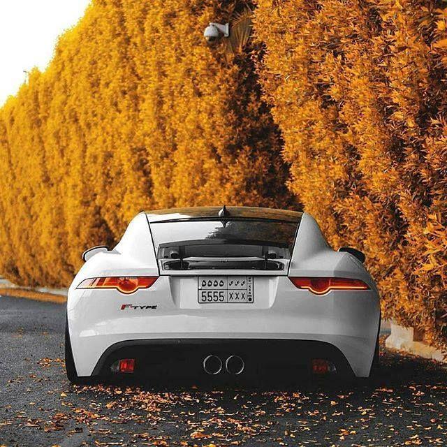 Jaguar Xjr Lease: 25+ Best Ideas About Jaguar F Type On Pinterest