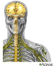 MedlinePlus: Spinal Cord Injuries