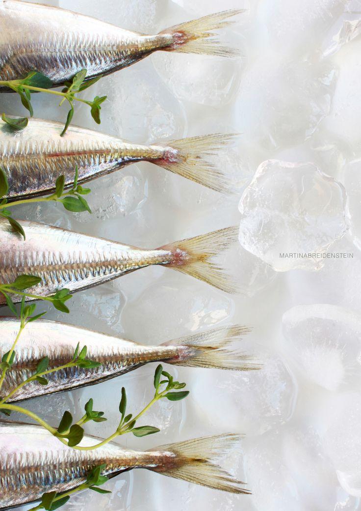 Frutos del mar