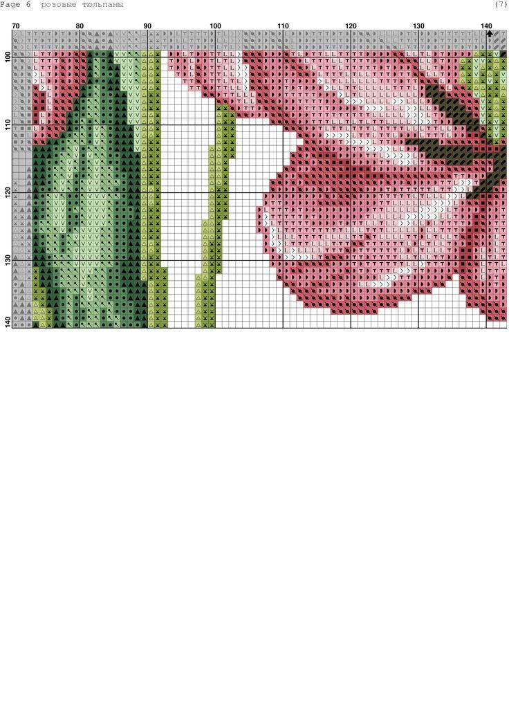 Fresh Tulips 8