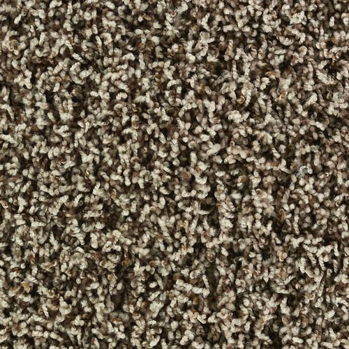 Shaw Frieze Carpet | Shaw Savannah Frieze Carpet 12 Ft Wide