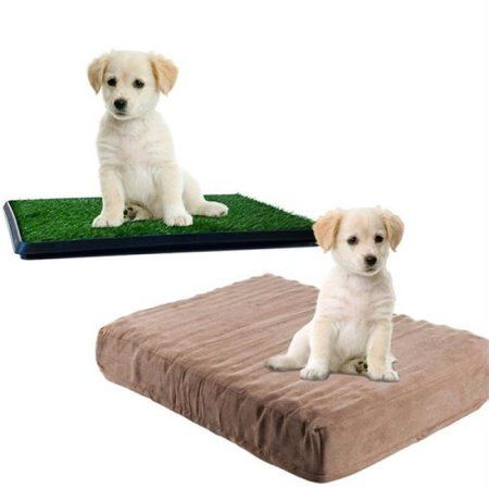 Memory Foam Dog Bed and Puppy Potty Trainer Set by Petmaker, Multicolor