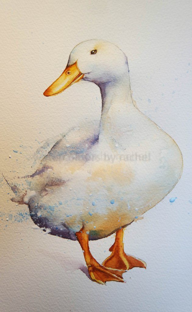 How to paint a white duck on white paper.