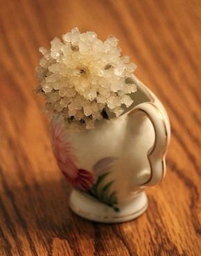 Crystal Flower: It's easy to crystallize a real flower, such as this thistle. You only need borax, water & a flower.