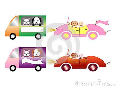 Colorful #cars with #pets: #dog and #cat