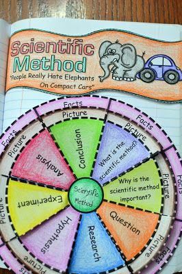 Scientific Method Foldable                                                                                                                                                                                 More