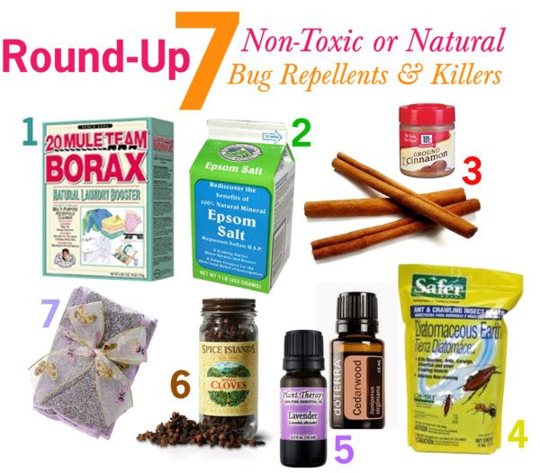 The Lovely Side: 7 Non-Toxic or Natural Bug Repellents  Killers