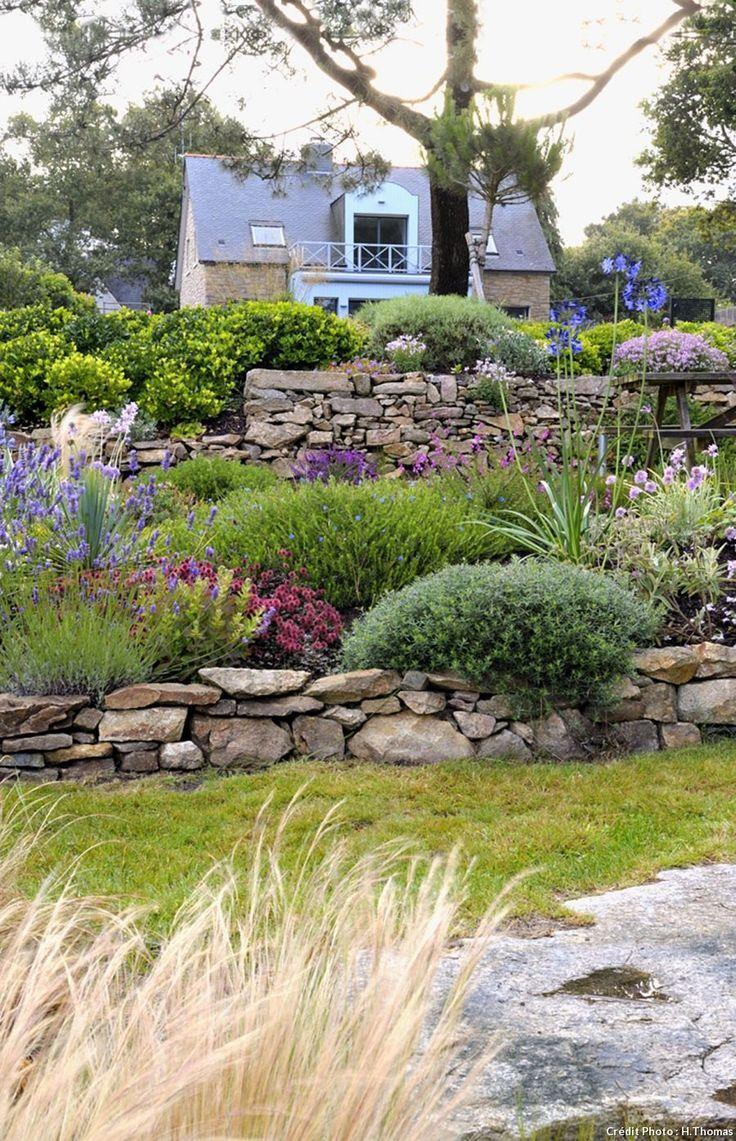 Ein bretonischer Garten aus Agapanthus und blauen Hortensien