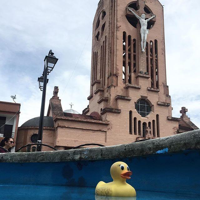 #ElPatoDeTriego en #Quimbaya, #Quindío, #Colombia.