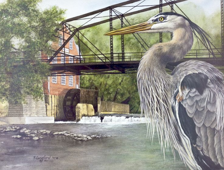30 Best Images About War Eagle Mill On Pinterest Justin