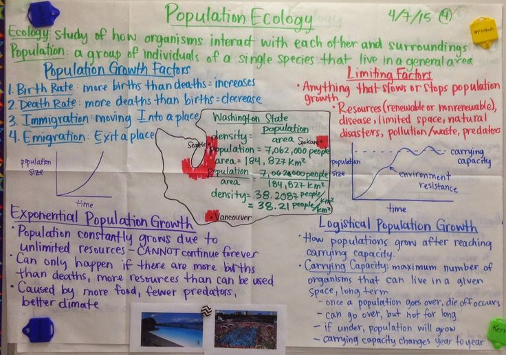 grade 11 biology evolution Here is the best resource for homework help with biology sbi3u : grade 11 biology at colonel by secondary school find biologysbi3u study guides, notes, and.