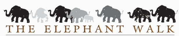 Had dinner in Brookline tonight at this restaurant. Excellent service with very informed staff.     http://www.elephantwalk.com/
