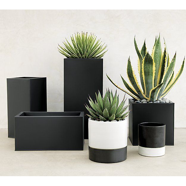 urban landscape. Charcoal planter squares up sleek and modern. Protected for indoor and outdoor settings, matte-finished galvanized steel plays up refined industrial to dramatic effect.