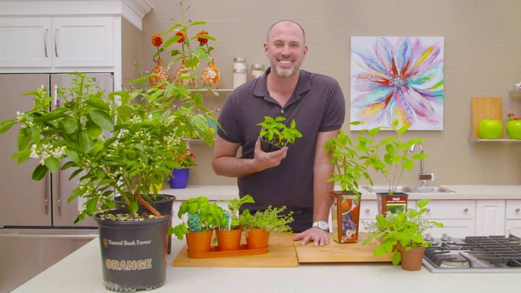 Carson Arthur gives some tips on starting your own tasty edible garden! And tells us about the hottest pepper he's ever tried! (From Terra's Hot'n saucy event!)