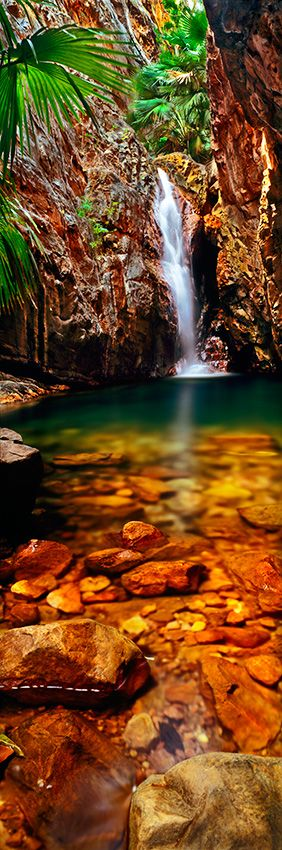 Kimberley Tropical Oasis -  A magical grotto amid a tiny remnant of Kimberley rainforest, El Questro Gorge Falls is the reward after a long hike through spectacular tropical scenery. El Questro Station. East Kimberley, Western Australia. Photo by Adam Monk