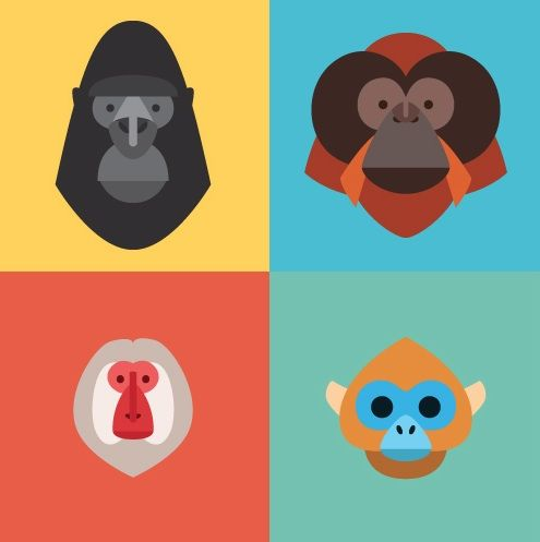 Beautiful character design meets the primate family