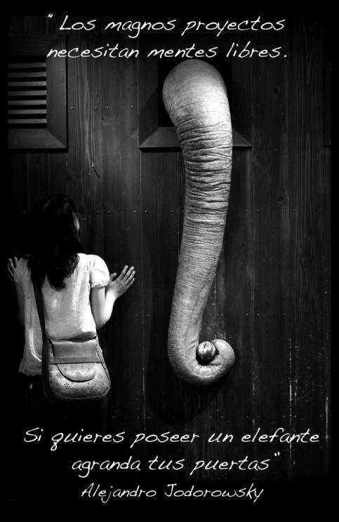 ¡Abre, que es domingo!… reflexiones sobre puertas   PLANO CREATIVO - Alejandro Jodorowsky #inspiracion #frases