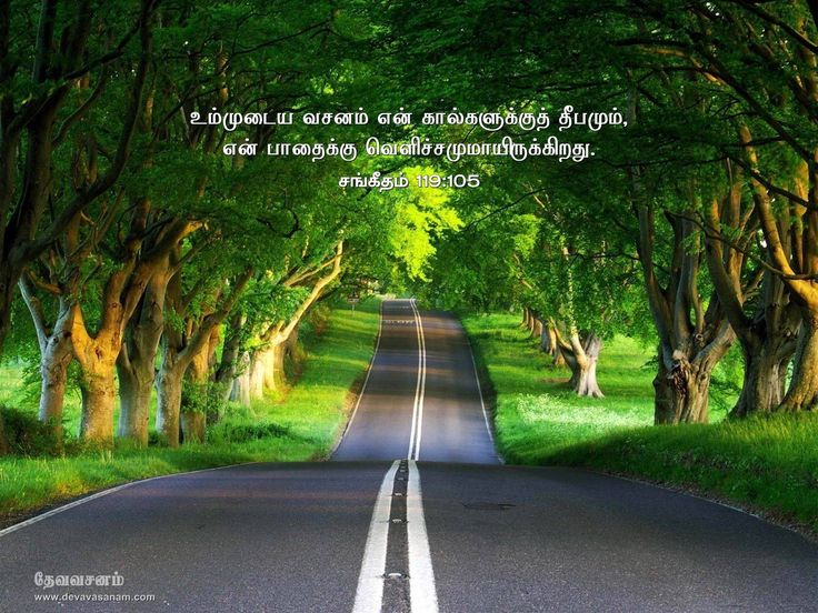 at 8 20 am labels tamil bible quotes tamil bible verse wallpapers
