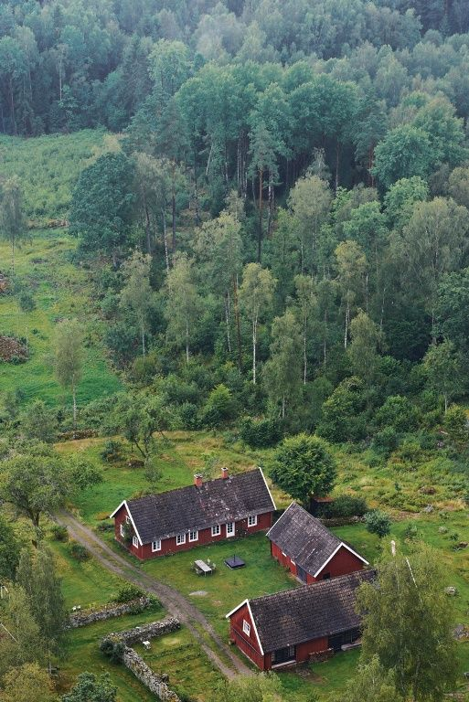 Dream house, renovated Swedish gård on the edge of a forest. More pictures of the interior behind the link.