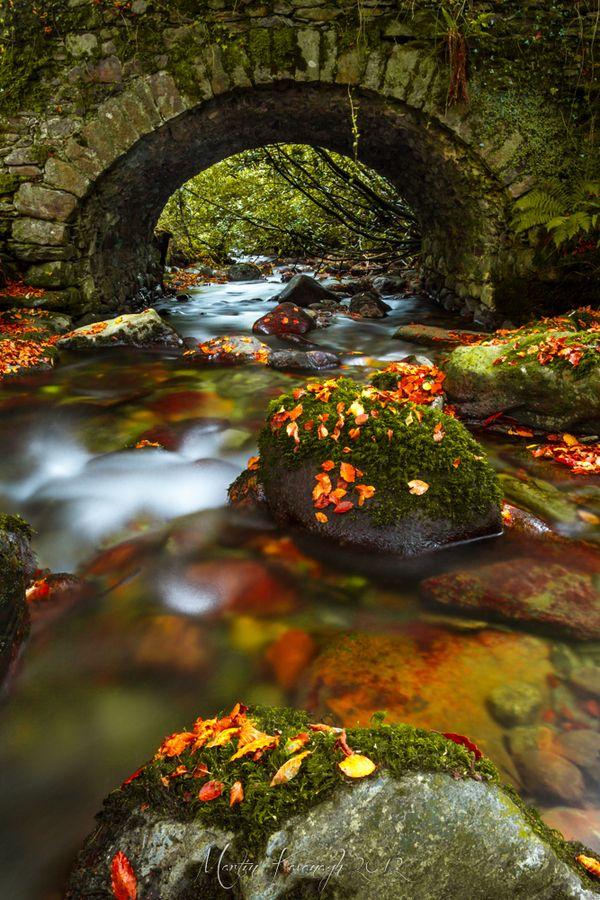Autumn Bridge ~ Inistioge, County, Kilkenny Ireland by Martin Kavanagh