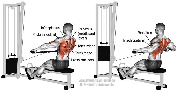Wide grip cable row. A compound pull exercise. There is no specific target muscle. Your Latissimus Dorsi, Teres Major, Erector Spinae, Rhomboids, Middle and Lower Trapezii, Infraspinatus, Teres Minor, Posterior Deltoid, Pectoralis Major, Brachialis, and Brachioradialis work synergistically.
