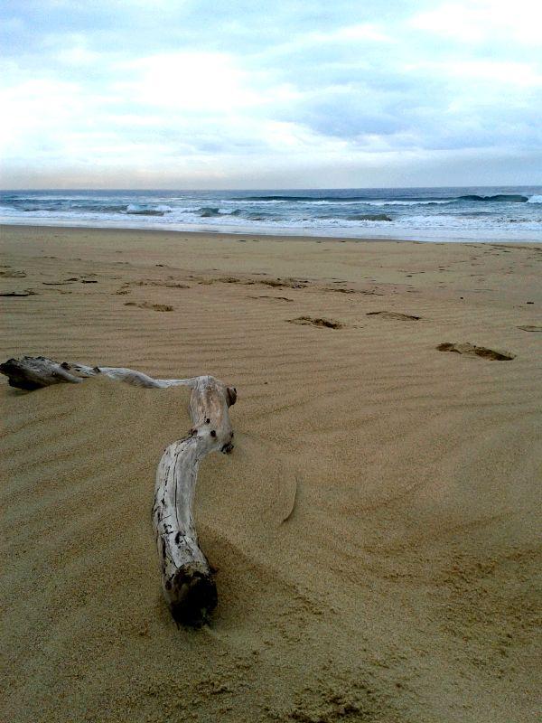 Ponta Malongane, Mozambique #beach