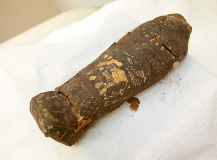 Tiny, 2,300-Year-Old #Egyptian #Mummy Believed to be a Hawk is Actually a Human Fetus