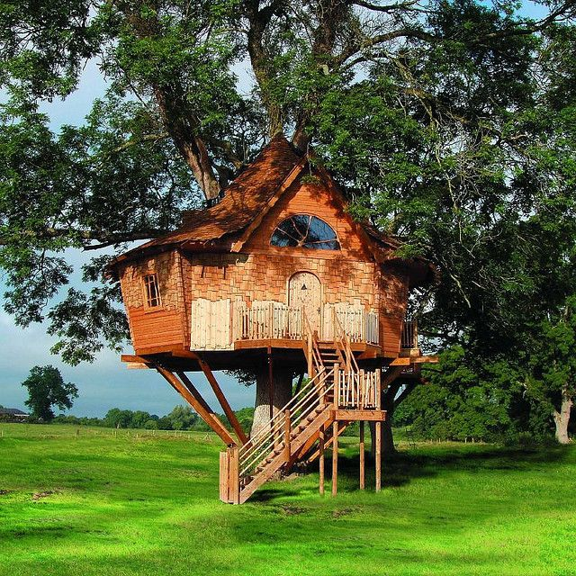 Treehouse in Scotland
