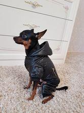 Tienda Online Cuero pequeña mascota ropa para perros de invierno Desmontable de dos piezas set perro abrigo y chaqueta caliente cuatro patas con capucha para perros ropa para mascotas ropa | Aliexpress móvil