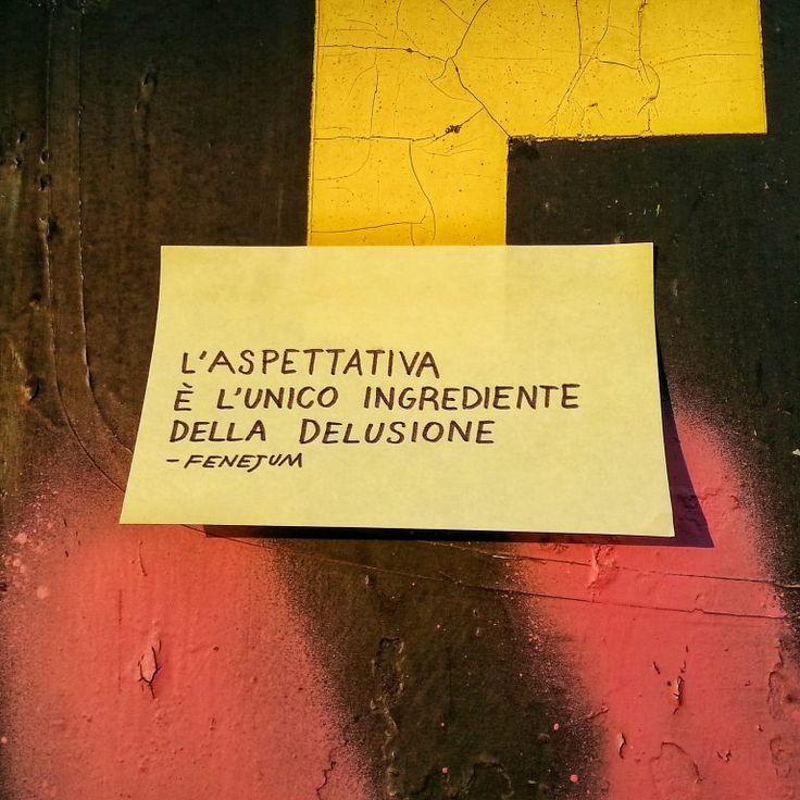 Fenejum, L'aspettativa è l'unico ingrediente della delusione
