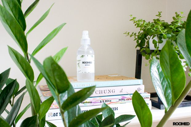 DIY: a super simple home spray with only 3 ingredients!