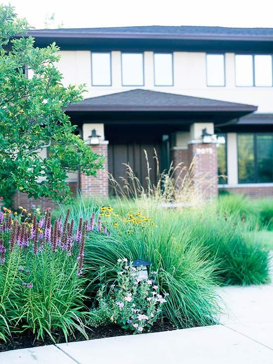 Get landscaping ideas from your house front yard for Front yard ornamental grasses