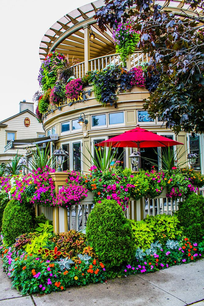Flower Of Niagara By Zubalich Guidolin On 500px Beautiful Gardens Beautiful Landscapes Garden Design